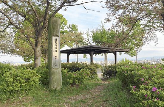 ナカノシマ大学2021年10月講座  大阪「八低山」をゆく